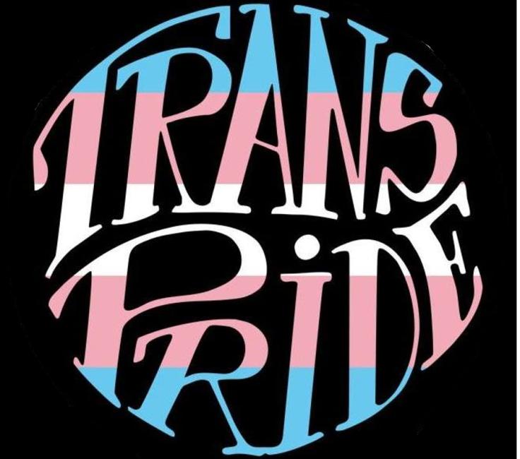 Logo Trans Pride